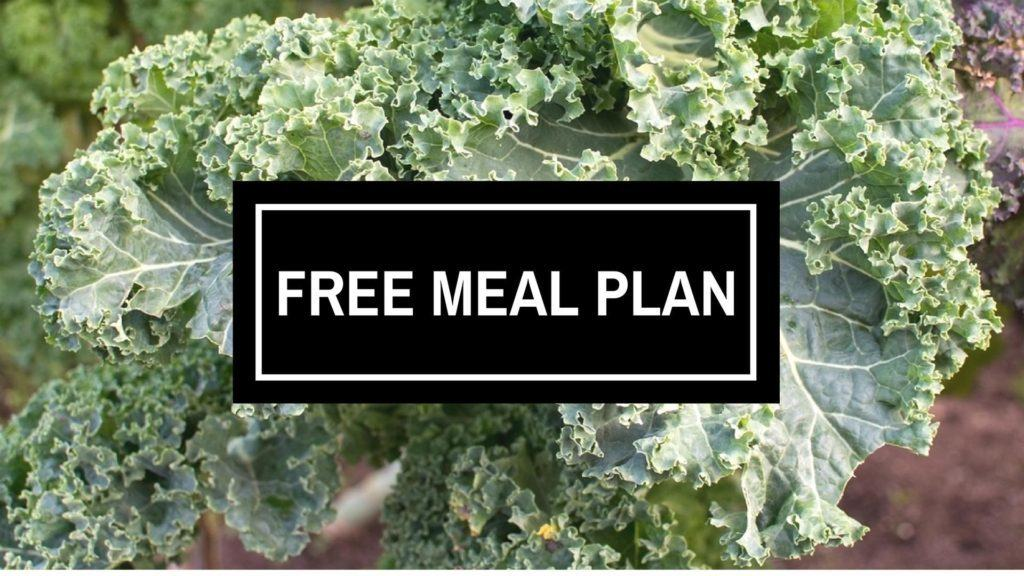free vegan meal plan